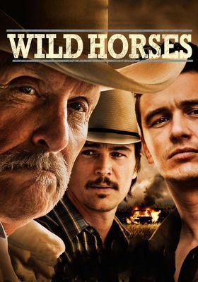 Wild Horses's Poster