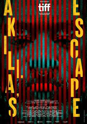 『Akilla's Escape(原題)』のポスター