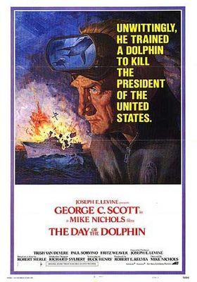 돌고래 알파의 포스터