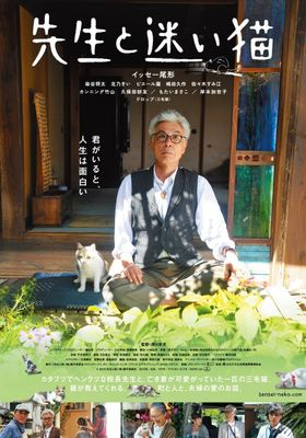 Teacher and Stray Cat's Poster