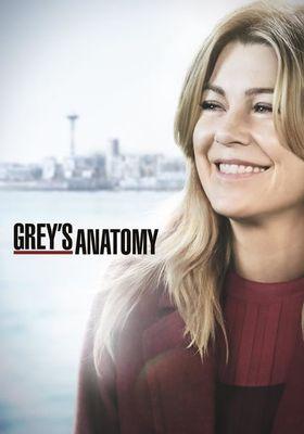 Grey's Anatomy Season 15's Poster