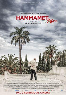 함마메트의 포스터