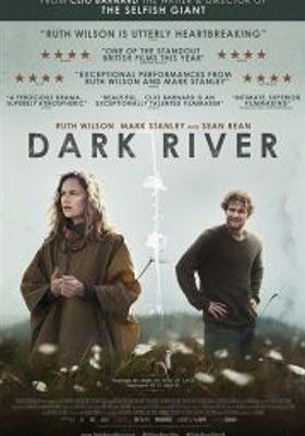 어두운 강의 포스터