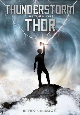 『サンダーストーム 雷鋼の鎧』のポスター