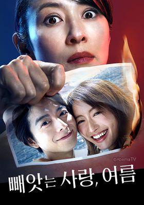 『奪い愛、夏』のポスター