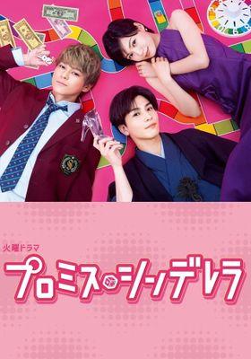 Promise Cinderella 's Poster