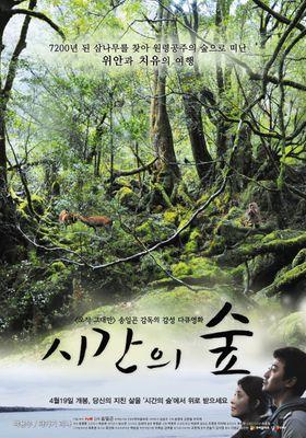 시간의 숲의 포스터