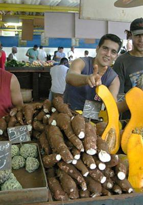 공동체의 힘: 쿠바의 녹색혁명의 포스터