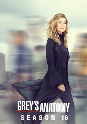 Grey's Anatomy Season 16's Poster