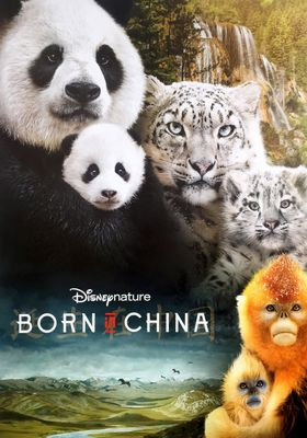 Born in China's Poster