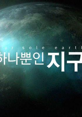 『Our Sole Earth(英題)』のポスター