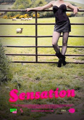 센세이션의 포스터