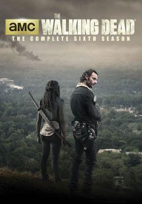 『ウォーキング・デッド シーズン6』のポスター