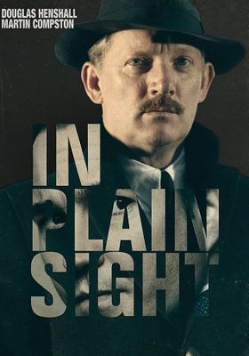 In Plain Sight 's Poster