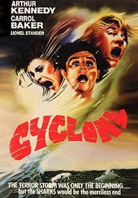 사이클론의 포스터