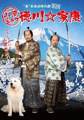 소하드라마 도쿠가와 ☆ 이에야스의 포스터
