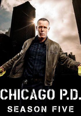 Chicago P.D. Season 5's Poster