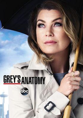 Grey's Anatomy Season 12's Poster