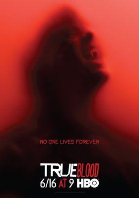 『トゥルーブラッド<シックス・シーズン>』のポスター