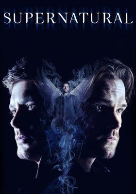 Supernatural Season 14's Poster