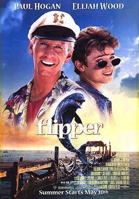 플리퍼의 포스터
