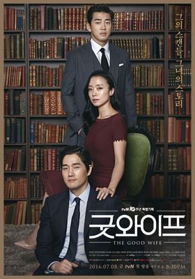 The Good Wife 's Poster