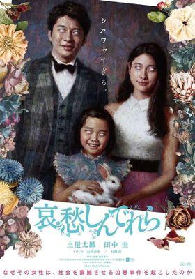 애수 신데렐라의 포스터