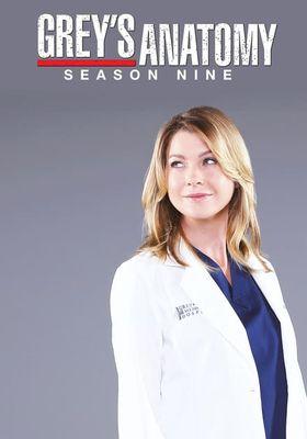 Grey's Anatomy Season 9's Poster