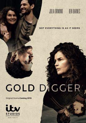 골드 디거의 포스터