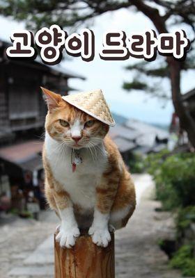 『Cat TV(英題) シーズン 2』のポスター