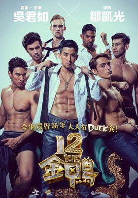 12 Golden Ducks's Poster