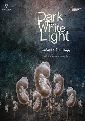 Dark in the White Light's Poster
