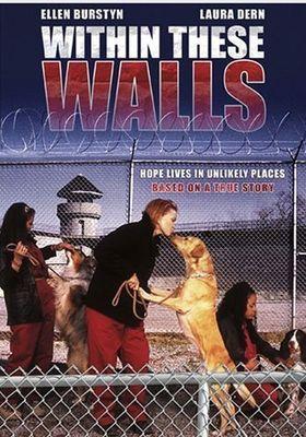 벽의 포스터