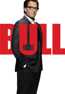 Bull Season 2's Poster
