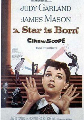 스타 탄생의 포스터