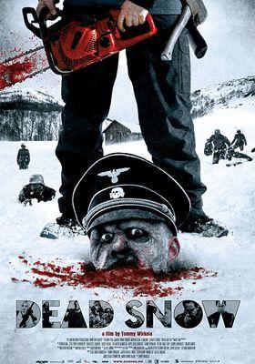 『処刑山 デッドスノウ』のポスター